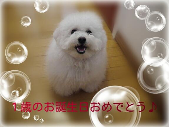 CYMERA_20140113_145153.jpg