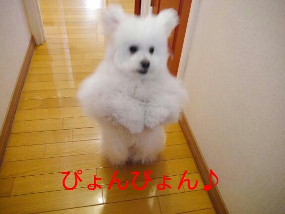 CYMERA_20140113_211356.jpg