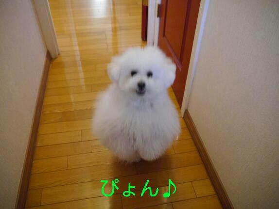 CYMERA_20140113_211620.jpg