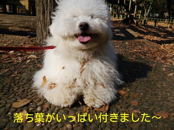 CYMERA_20140121_150939.jpg
