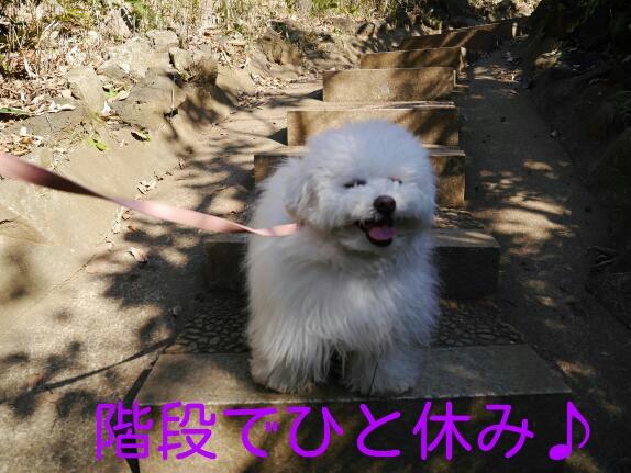 CYMERA_20140122_000325.jpg