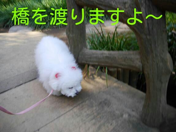 CYMERA_20140122_000936.jpg