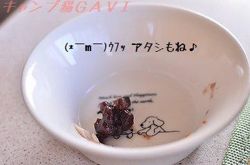 DSC_4981.jpg