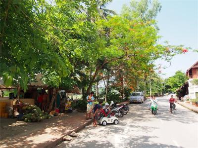 LuangPrabang201306-209