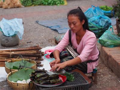 LuangPrabang201306-604