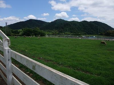 2013_0512_14.jpg