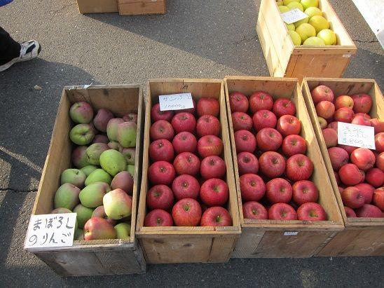 2013年産 インドりんご