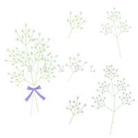 エコでナチュラルな自然イラスト素材 かすみ草のイラスト