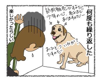 羊の国のラブラドール絵日記シニア!!「Knock! Knock! Who's there?」4コマ4