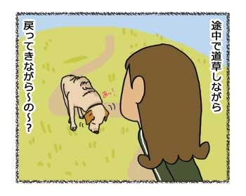 羊の国のラブラドール絵日記シニア!!「期限切れコマンド」4コマ3