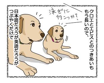 羊の国のラブラドール絵日記シニア!!「ほんやくクロエちゃん」4コマ1