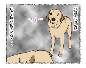 羊の国のラブラドール絵日記シニア!!「いらぬ疑い」4コマ1