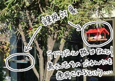 羊の国のラブラドール絵日記シニア!!「増税反対」写真日記4