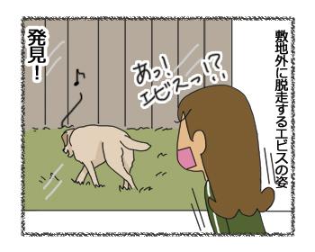 羊の国のラブラドール絵日記シニア!!「新キャラ登場!?」2