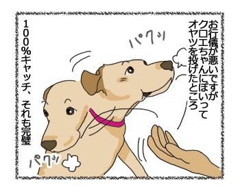 羊の国のラブラドール絵日記シニア!!ドンマイ!エビちゃん!1