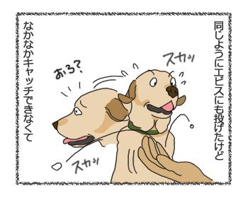 羊の国のラブラドール絵日記シニア!!ドンマイ!エビちゃん!2