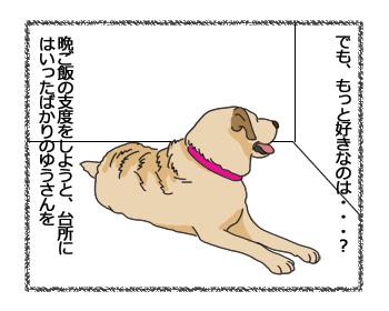 羊の国のラブラドール絵日記シニア!!「細かすぎて伝わらない・・・?クロエちゃん編」3