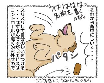 羊の国のラブラドール絵日記シニア!!「男子の宝物。女子の・・・?」4コマ2