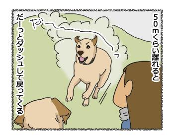 羊の国のラブラドール絵日記シニア!!「雨の日のくふう」4コマ2