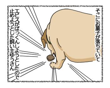 羊の国のラブラドール絵日記シニア!!「結果オーライ」4コマ2