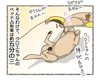 羊の国のラブラドール絵日記シニア!!「五分の三」4コマ4