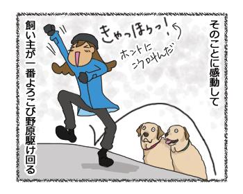 羊の国のラブラドール絵日記シニア!!「寒波到来」4コマ4