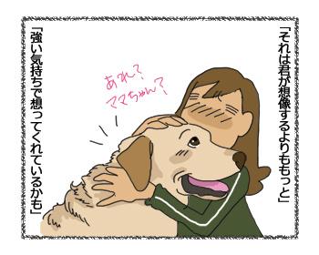 羊の国のラブラドール絵日記シニア!!「クロエちゃんのこと」4コマ3