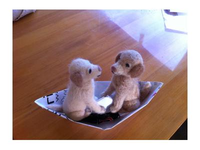 羊の国のラブラドール絵日記シニア!!ようやく「クロエビス」写真2