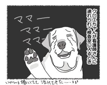 羊の国のラブラドール絵日記シニア!!「ズルい女」4コマ2