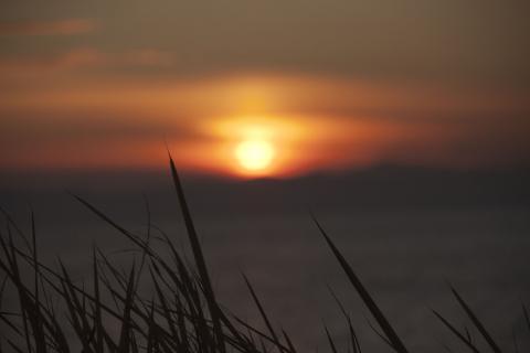 2011 砂浜 夕焼け 4