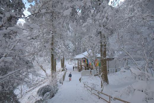 20110108-27.jpg