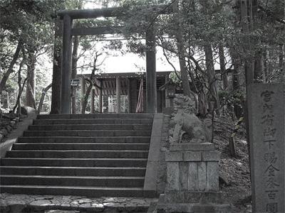 20110203-1.jpg