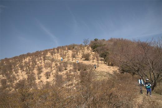 20110410-6.jpg