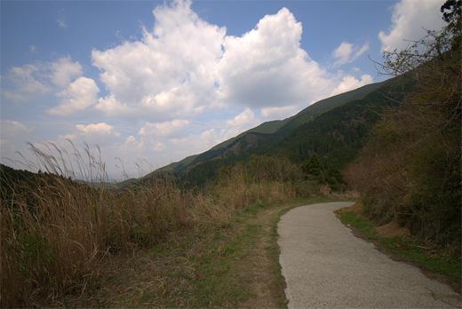 20110424-27.jpg