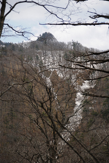 20110429-27.jpg