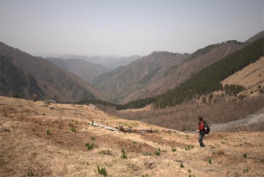 20110504-8.jpg