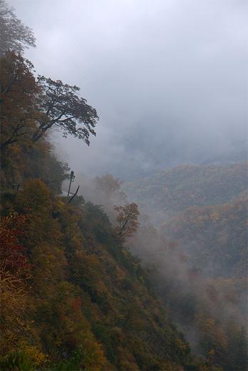 20121103-66.jpg