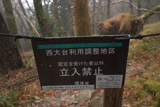 20121111-11.jpg