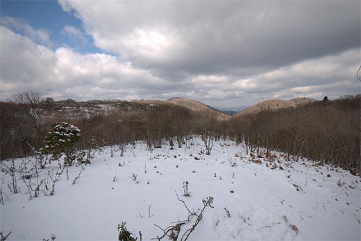 20130210-46.jpg