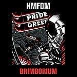 KMFDM Brimborium 2008