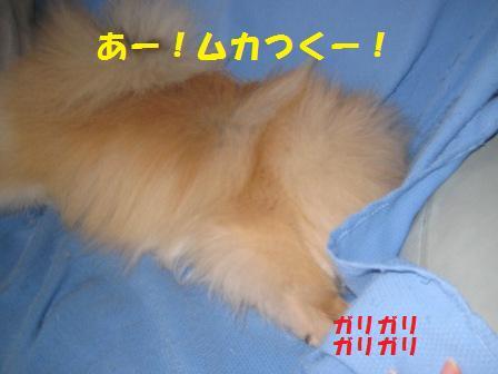 20140926_2.jpg
