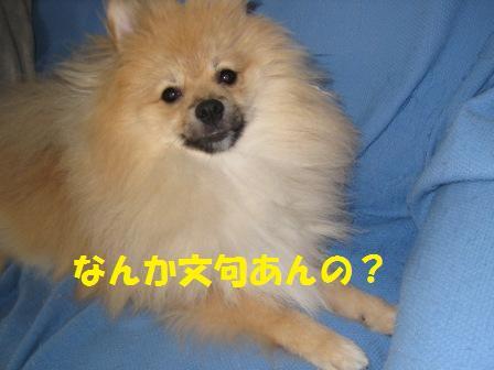 20140926_3.jpg
