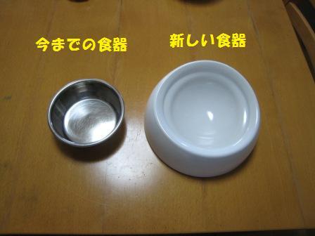 20140928_1.jpg