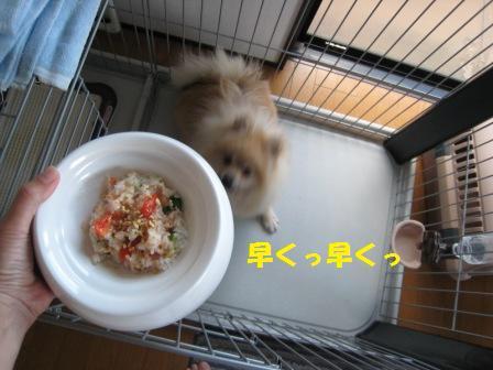 20140928_4.jpg