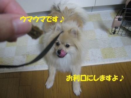 20141205_2.jpg
