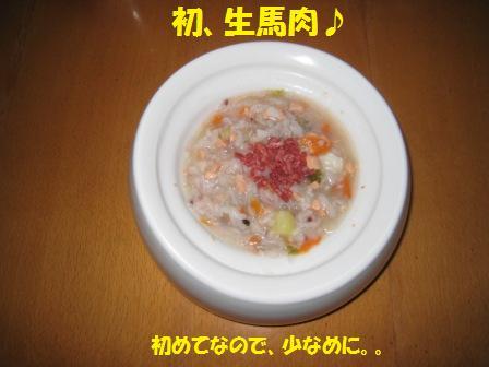 20141211_2.jpg