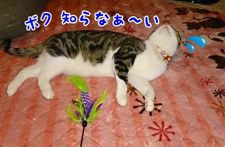 fc2_2014-01-17_00-40-45-721.jpg