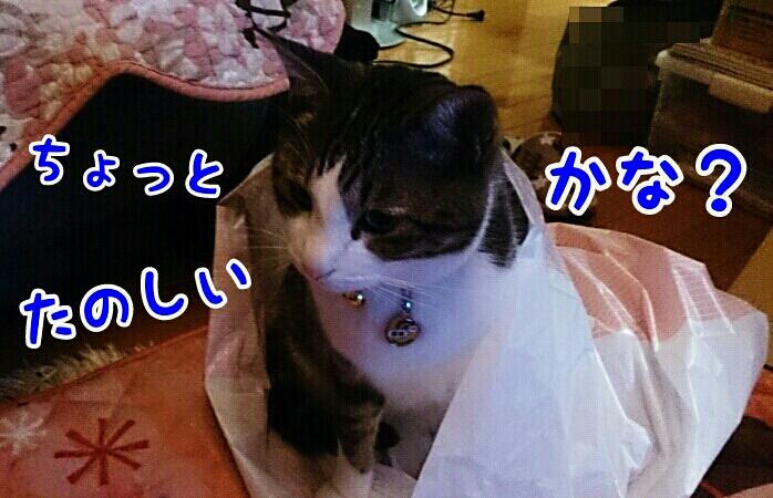 fc2_2014-01-26_21-21-09-641.jpg