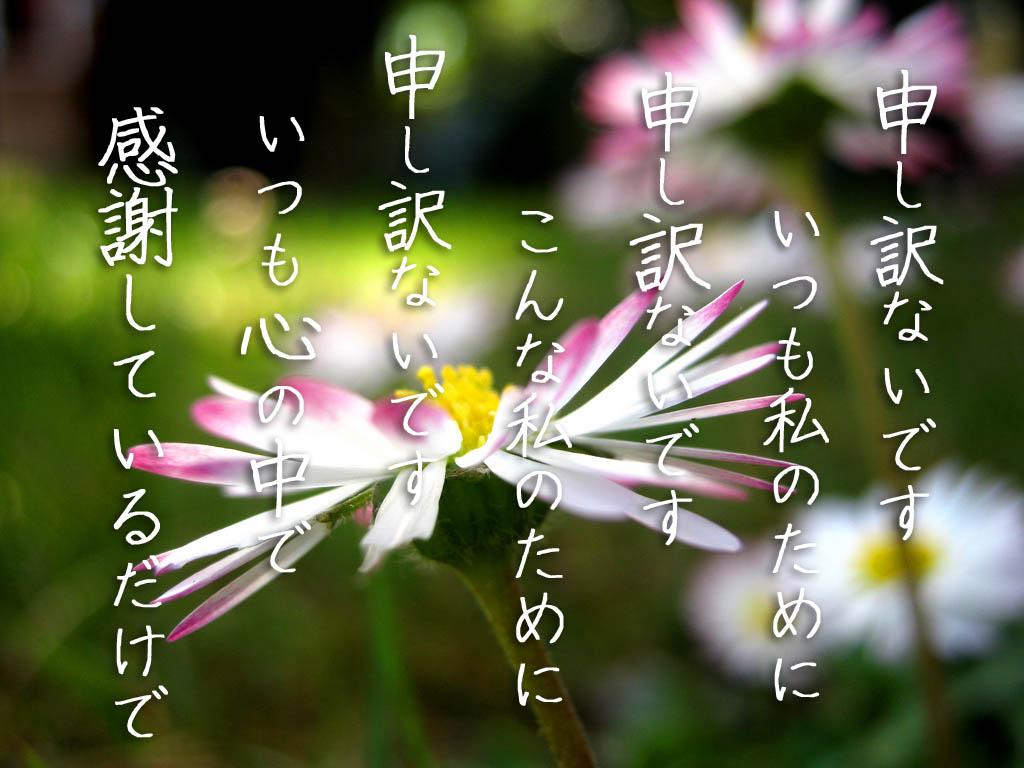 20120930170146a6e.jpg