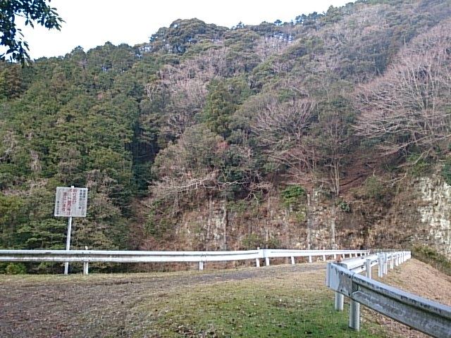 DS036.jpg